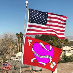 happy valentine's day flag, usa flag, flagpole, solar beacon light, blue skies, palm trees